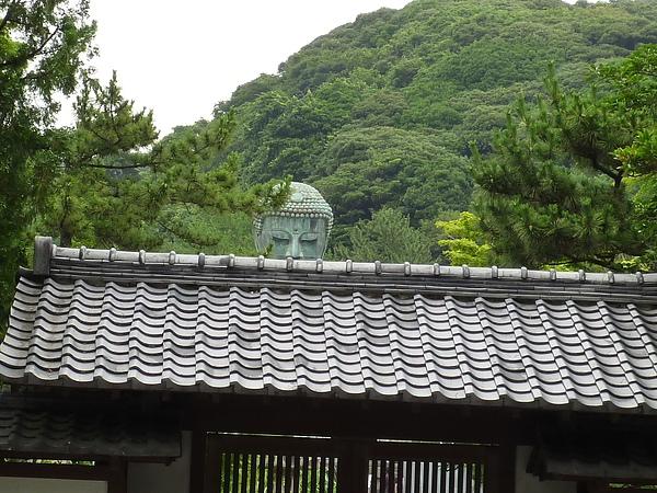 箱根141.JPG