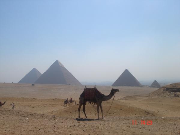 07 0604 egypt 726.jpg