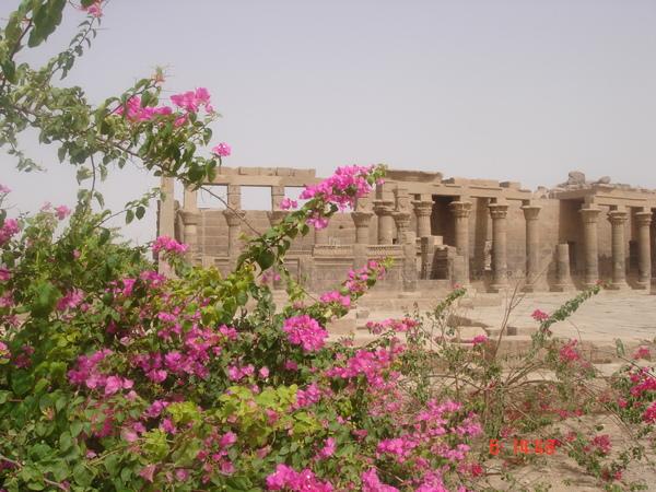 07 0604 egypt 165.jpg