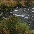 090408絕美南島紐西蘭 1843.jpg