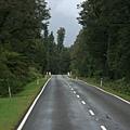 090408絕美南島紐西蘭 906.jpg