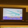 SM航空3.JPG