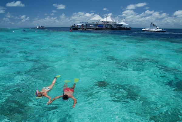 Reef_snorkelling.JPG