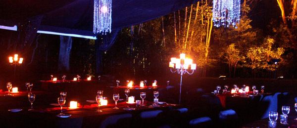森林晚宴1.jpg