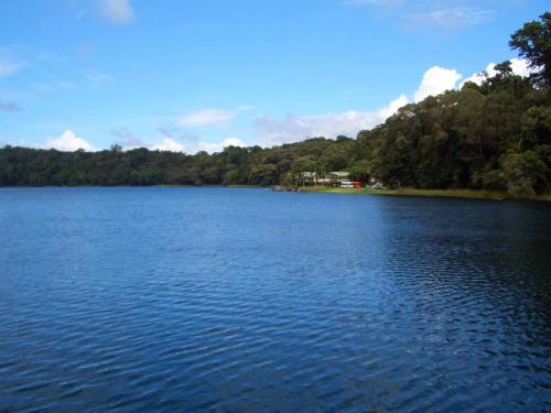 cns(lake barrine3).jpg
