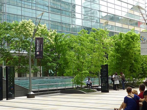 東京中城39.JPG