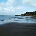 AKL西海岸3.jpg