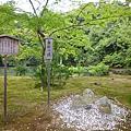 金澤寺23.JPG