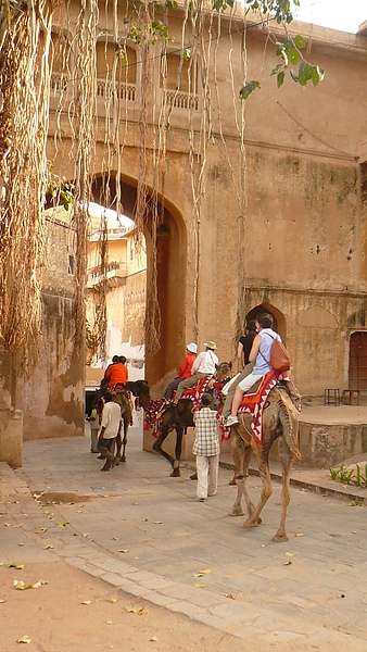 Samode Palce(Camel ride).JPG