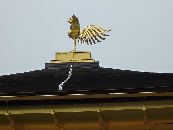 金澤寺13.JPG