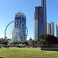 OOL WHEEL OF SURFERS PARADISE3.jpg