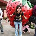 大湖草莓博物館