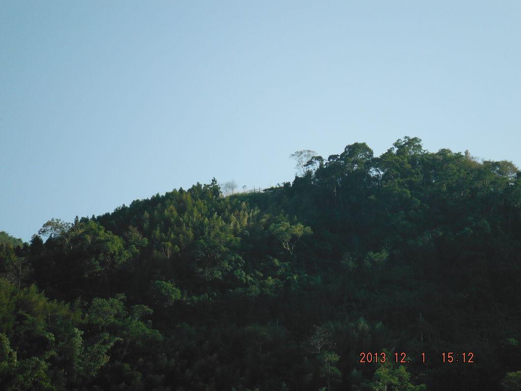 照片 088