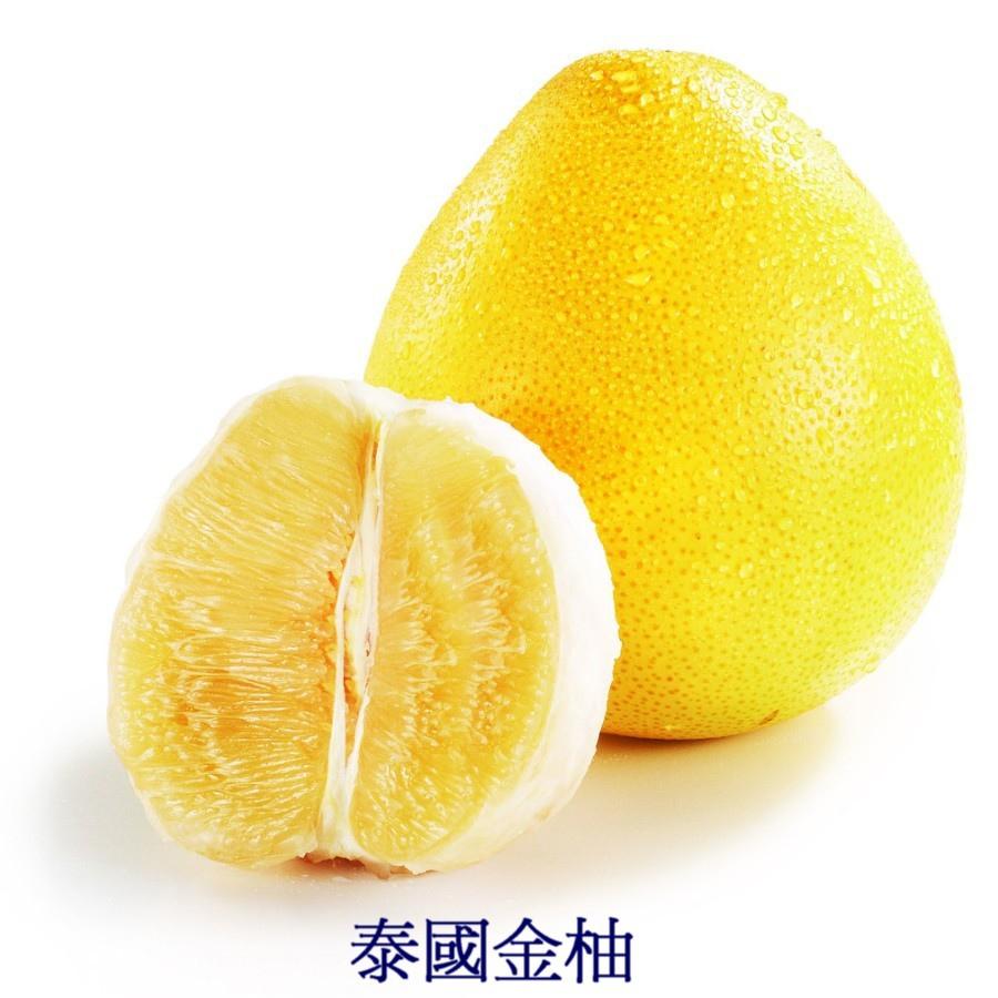 16 泰國金柚