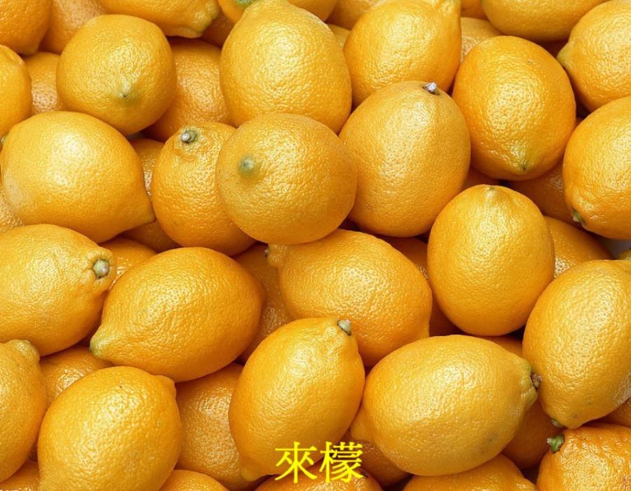 19 來檬