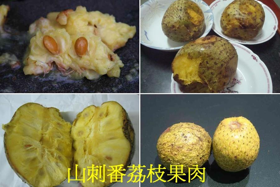 09山刺番荔枝果肉02