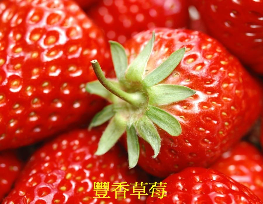 03 草莓a