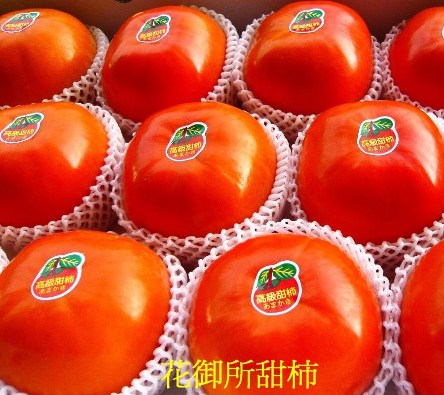 03 花御所甜柿
