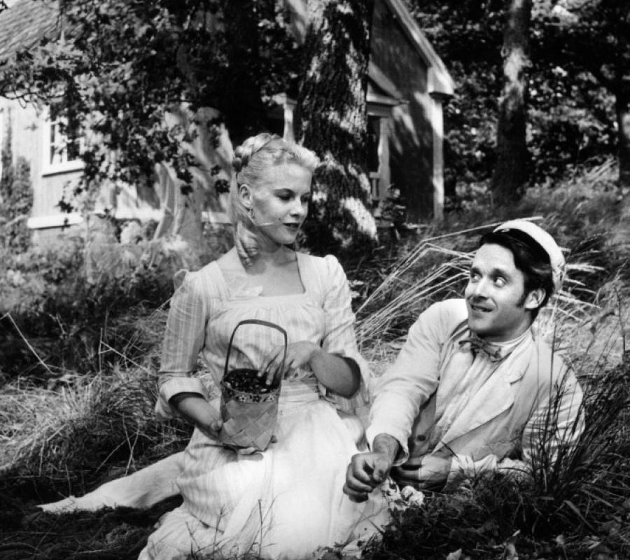 376 Bibi Andersson 畢比.安德森 (1935年 瑞典演員)10