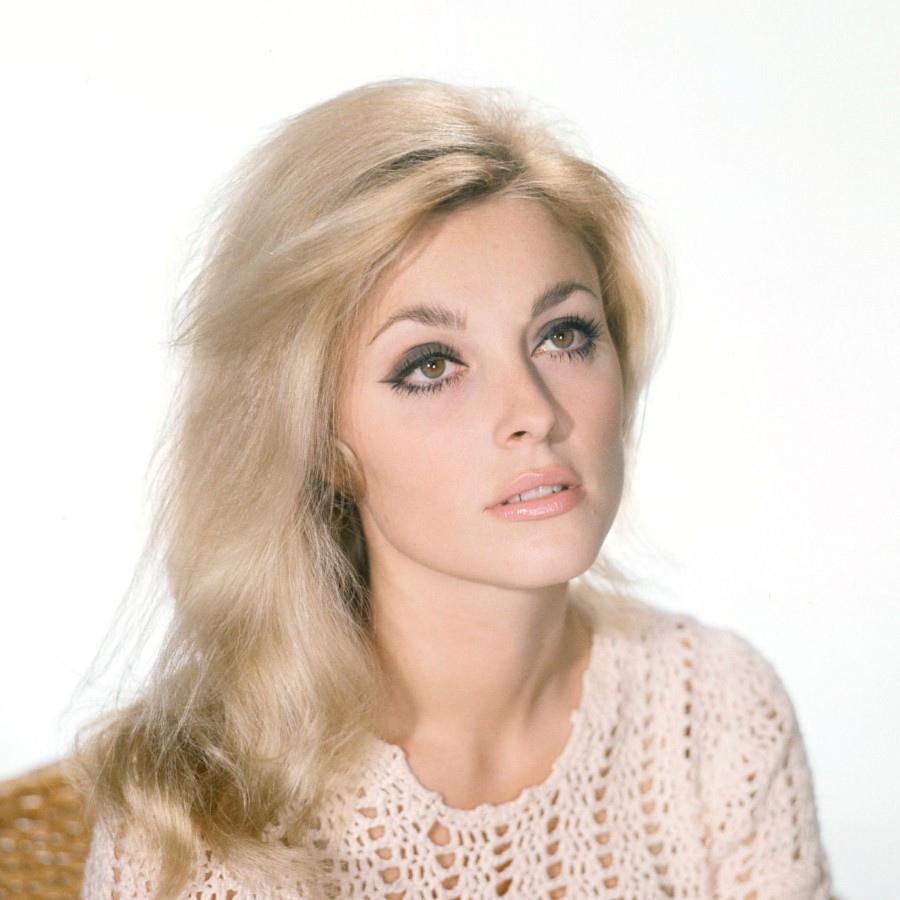 411 Sharon Tate 莎朗.蒂 (1943年-1969年 美國演員)07
