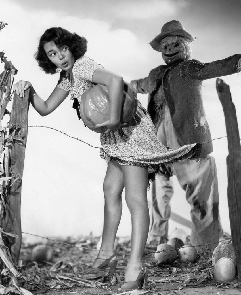 469 Joyce Holden 喬伊斯.霍頓 (1930年 美國演員)11