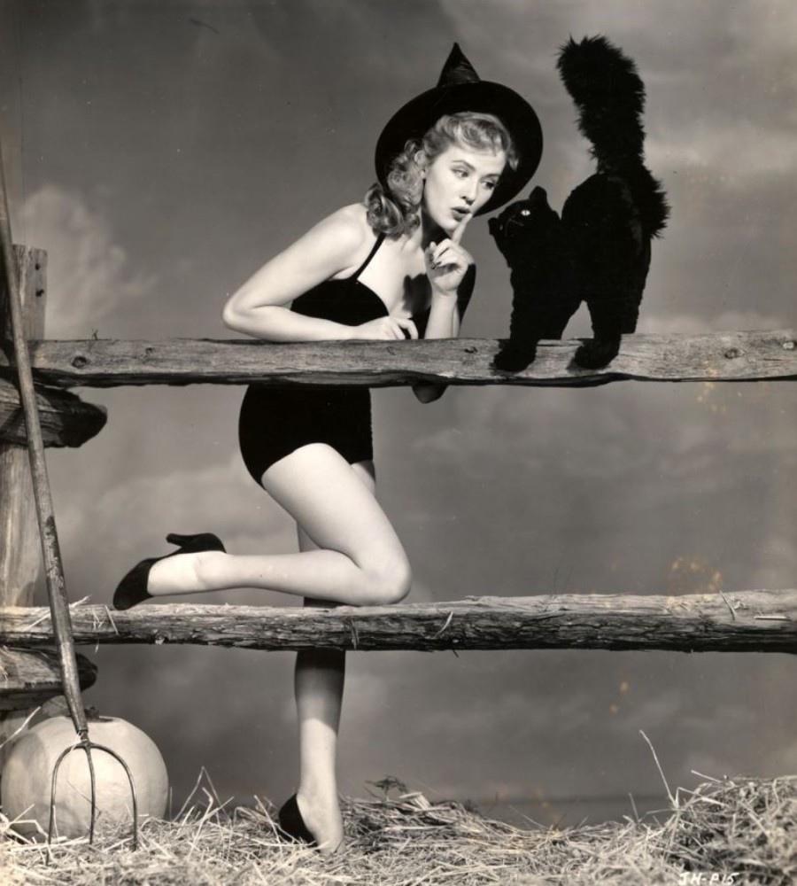 469 Joyce Holden 喬伊斯.霍頓 (1930年 美國演員)10