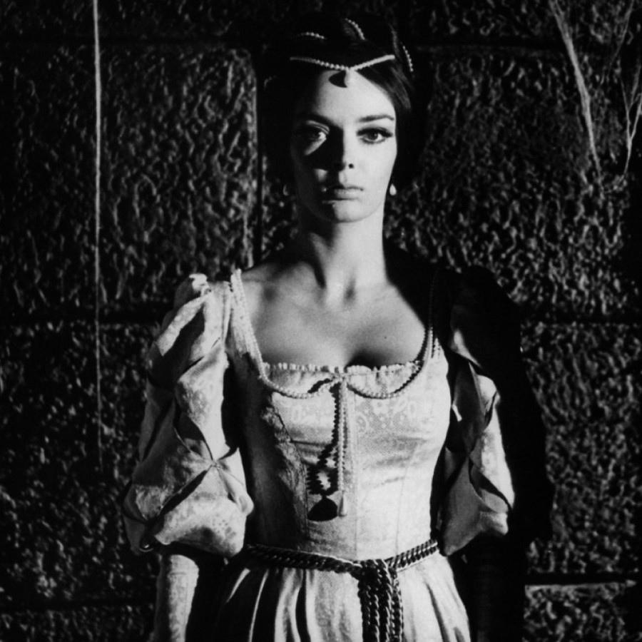 516 Barbara Steele 芭芭拉.斯蒂爾 (1937年 英格蘭演員)10