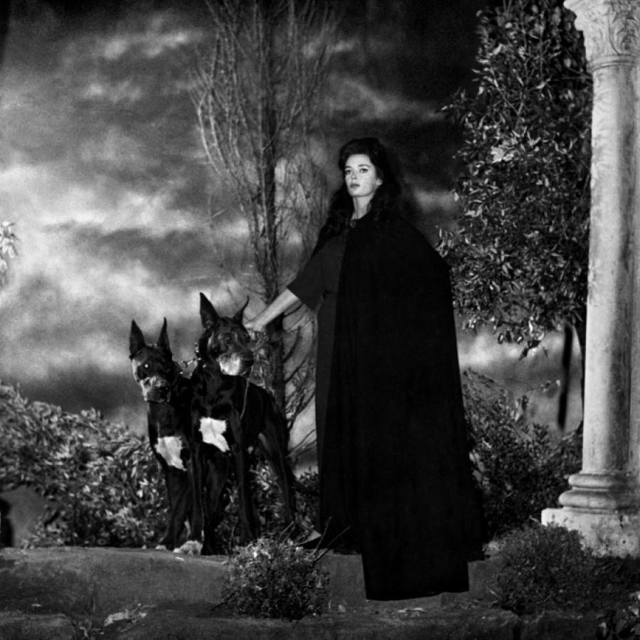 516 Barbara Steele 芭芭拉.斯蒂爾 (1937年 英格蘭演員)13