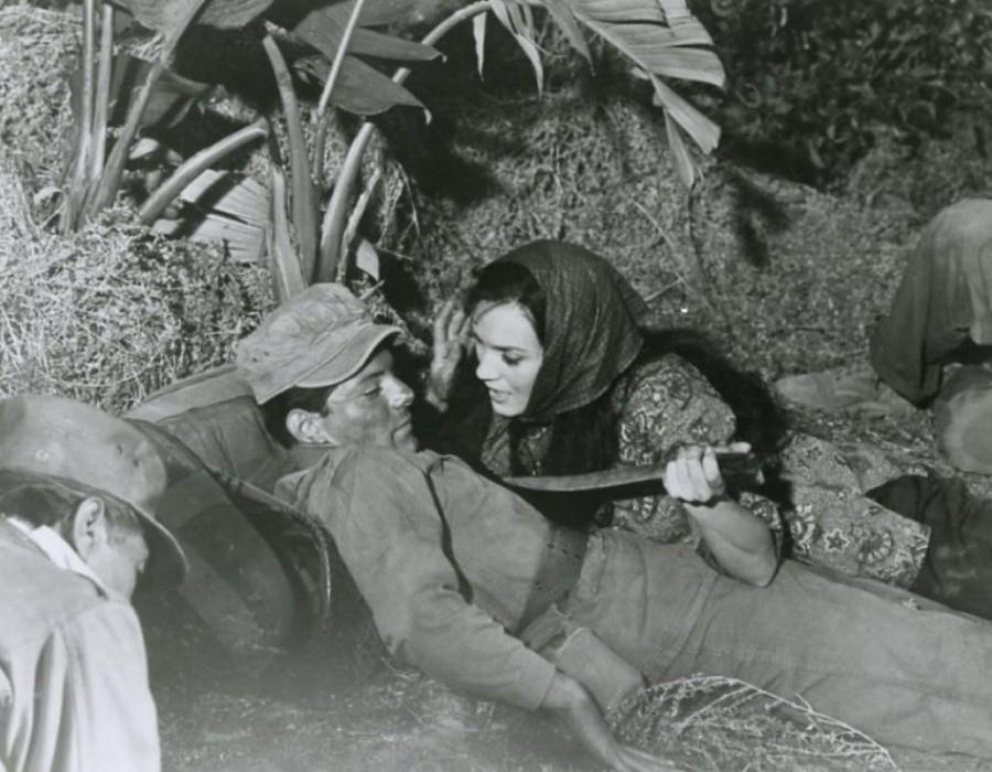518 Eva Six 伊娃.西克斯 (1937年 匈牙利猶太美國演員)05