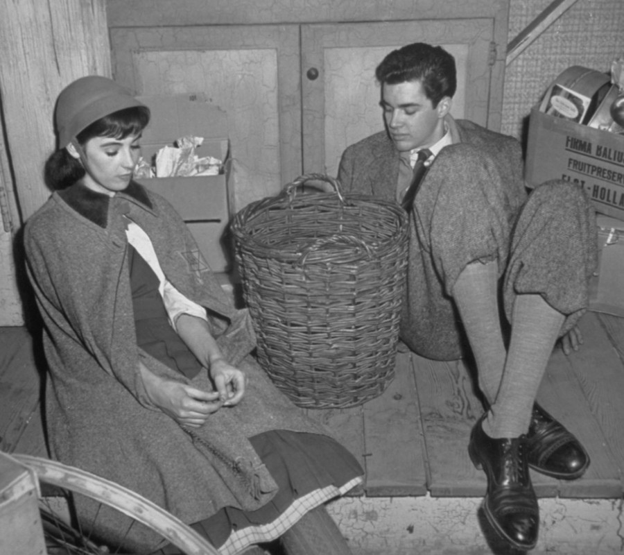 535 Millie Perkins 米莉.帕金斯 (1938年 美國電影、電視演員)14