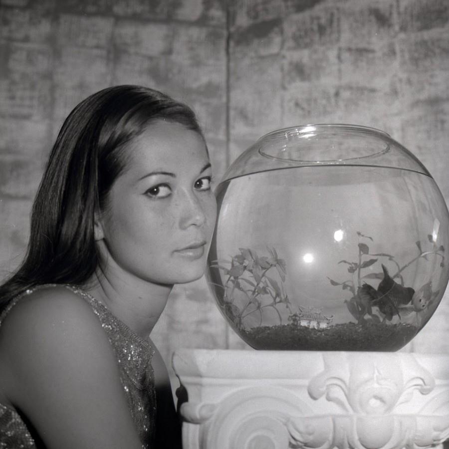 550 Nancy Kwan 關南施 (1939年 香港裔美國演員)02