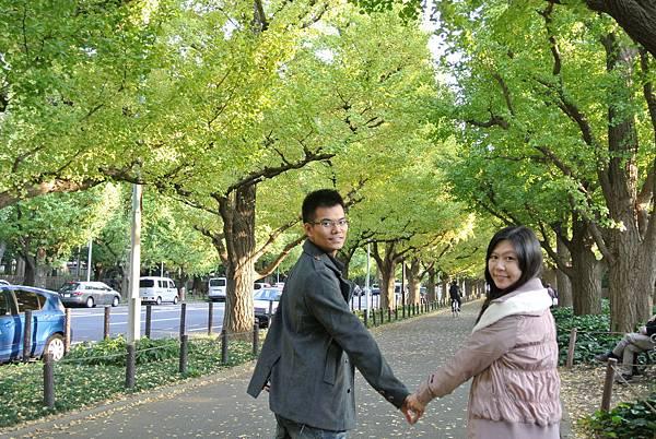 20131108明治神宮外苑銀杏並木11.JPG
