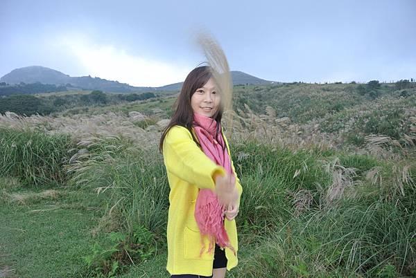 擎天崗賞芒草07.JPG
