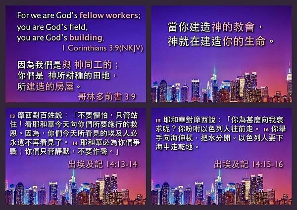 devotion1111.jpg