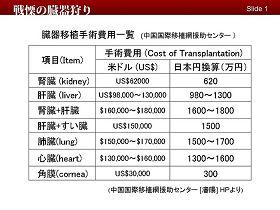 2009-7-10-japan-08--ss.jpg