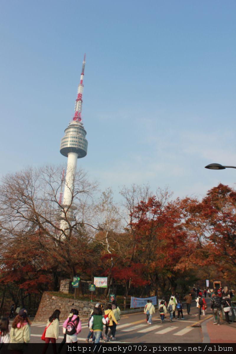 20111112 (3).JPG