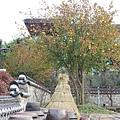 20111112 (71).JPG