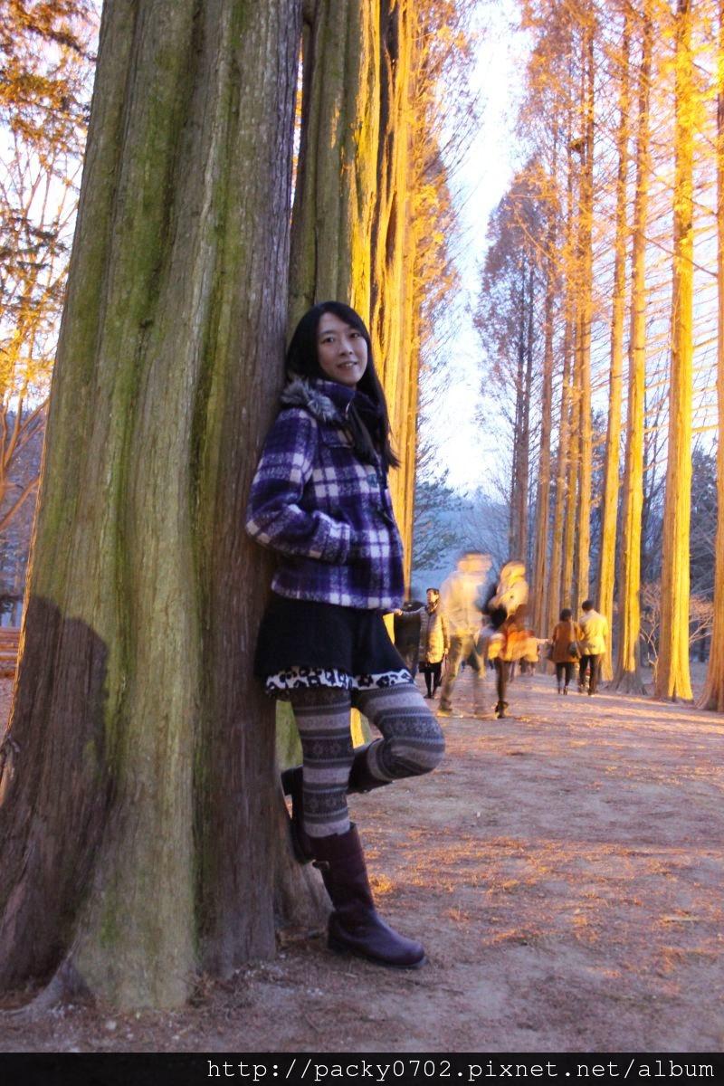 20111112 (127).JPG