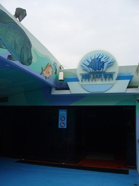 去海洋館看鯊魚囉