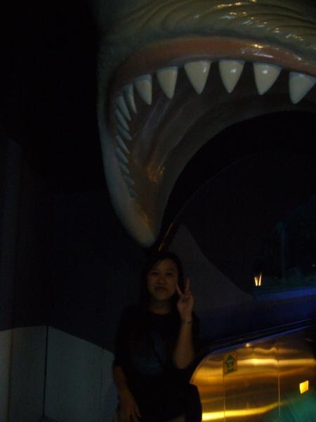 鯊魚大嘴吧