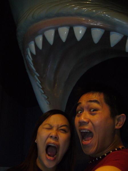 阿~~鯊魚押