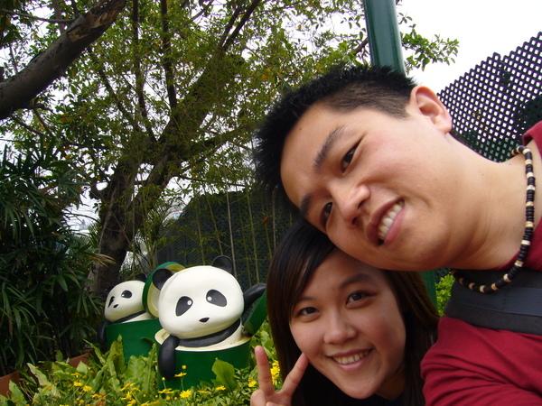 是貓熊還是熊貓咧