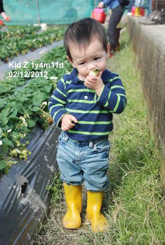 babies120212_1
