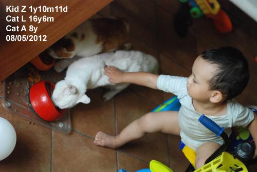 babies120805_4