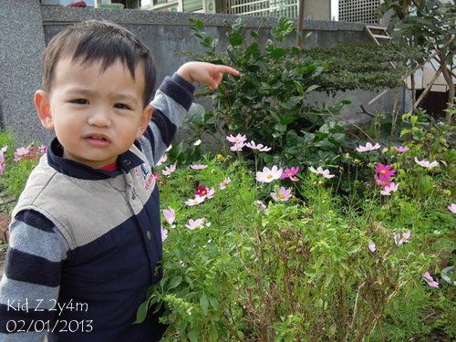 babies130201_2