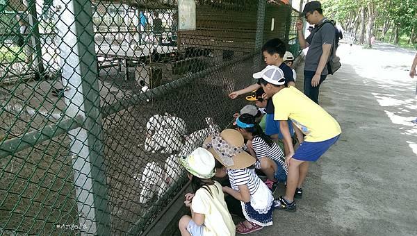 52動物園.jpg