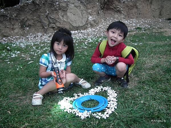 10小孩與桐花.jpg