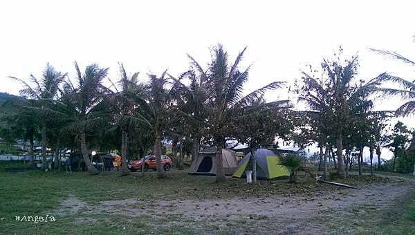 椰林區.jpg