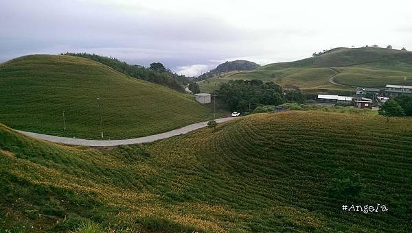 從小瑞士下山的景2.jpg