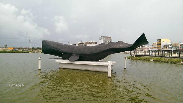 抹香鯨.jpg